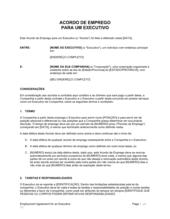 Acordo de Funcionário Executivo com Permissão de Automóvel