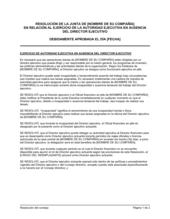 Resolución del directorio para aprobar la autoridad ejecutiva