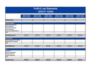 Profit & Loss Statement